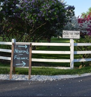 <em>Newcomb Pottery at Crab Tree Farm: Featuring the Fuldner Collection of Early Newcomb Pottery</em>